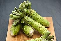 praf wasabi
